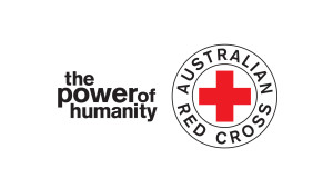 Hagrid Solutions - red cross logo